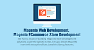 Magento Web Development, Magento ECommerce Store Development