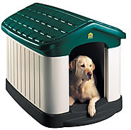 Unique Dog Houses - Steps to Finding the Right One