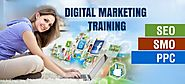 PHP, SEO, Digital Marketing Training Institute in Bhopal