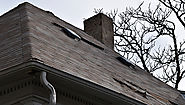Prevent Shingle Damage with a Professional Roof Consultation