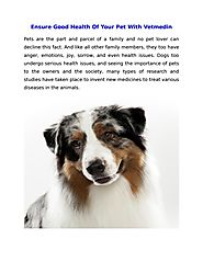 Ensure Good Health Of Your Pet With Vetmedin