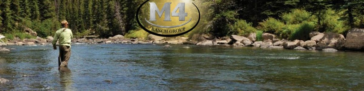 Headline for M4 Ranch Group