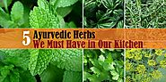 Flavour Boosters: 5 Ayurvedic Herbs We Must Have in Our Kitchen