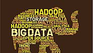 The Beginner's Guide To Hadoop | Hadoop Programming