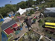 Green roof workshop hopes to bring gardening to new heights