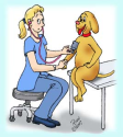 You keep checking your dog's blood pressure
