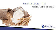 The Multi-Purpose Wheat Flour is the Real King of Grain