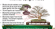 Analysis of what 'works' and what 'does not work' in the creation of bonsai: Trunk Rules.
