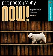 Pet Photography NOW!: A Fresh Approach to Photographing Animal Companions