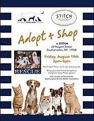 Stitch Southampton Hosts Adopt & Shop - The East End Experience