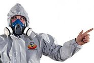 Top 5 Reasons to Hire a Professional Exterminator