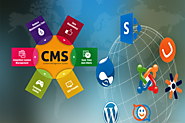 What should one opt CMS or ECMS