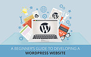 A Beginner's Guide to developing a WordPress website