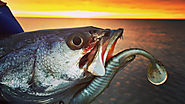 Louisiana Fishing Charters - Impulse Fishing Charters