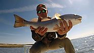 Hilton Head, Savannah, & Beaufort Fishing Charters - Carolina Fishing Adventures