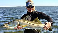 Tampa Fishing Charters with Light Tackle Adventures
