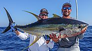 Offshore and Nearshore Charter Fishing