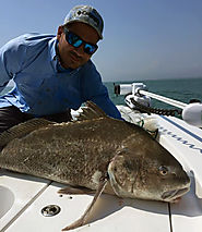 Cocoa Beach, & Port Canaveral Fishing Charters