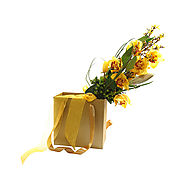 Buy Imported Fresh Flowers for your Special Occasions | Keona
