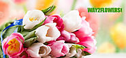 Send flowers to Ludhiana | Flowers to Ludhiana | Way2flowers - Way2flowers Blog