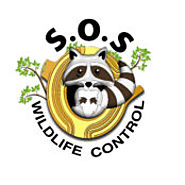 SOS Wildlife Control Inc. Officially Expands to The City of Markham