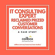 IT Consulting Expert Reclaimed Prized Customer Conversations
