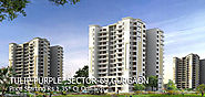 Buy Tulip Purple Gurgaon | Tulip Purple Apartments Gurgaon Sector 69