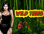 Play Wild Thing Slot Machine Free - Online Novomatic Game Review