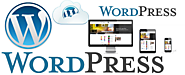Wordpress Developer Sydney | Wordpress Web Design & Web Development