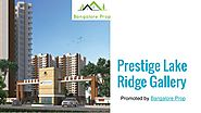 Prestige Lake Ridge Broucher