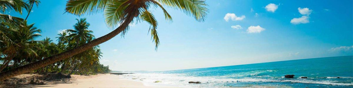 Headline for Best 07 Beaches in Sri Lanka – Get Set for Fun, Sun and Surf