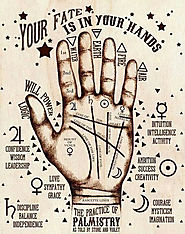 Read your PALM in Detail