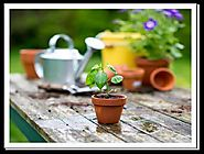 How beneficial are garden pots and planters for gardeners?