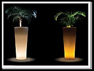 Lit Up the Rooms with Night Lamp Planters