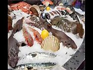 Find Seafood Retail Perth at Sensible Costs