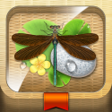 Meet the Insects: Water & Grass Edition - Educational App | AppyMall