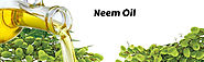 Neem oil is additionally used to deal with mildew and also fungus