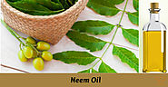 The natural neem oil has an extensive variety of its utilization