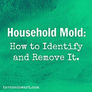 Dealing With Mold In Your Home