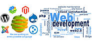 Professional Best Web Development Company in India | SwipeCubes Softs