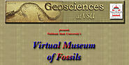 Fossil Home: Virtual museum