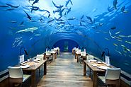 Dine Below the Waves