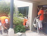 Interior Painters Christchurch | Willy Do It