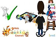Best Web Designing Course In Chennai For Your Better Career - Senelda