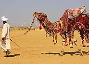 Book Rajasthan Heritage Tour, Rajasthan Tour packages and Heritage Tours