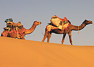 Book 7 Days Rajasthan Tour Package, Rajasthan Tours, Rajasthan Tour Packages