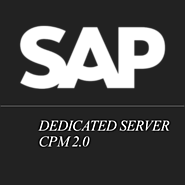 Professional and Reliable sap hosting partner USA | sap system access online USA
