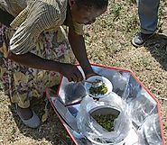 Solar Cooking Basics