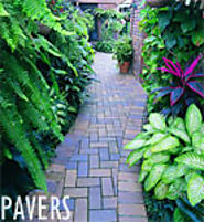 Learn Everything about Batoes Paving Centre