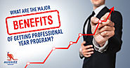 What are the major benefits of getting Professional Year Program?